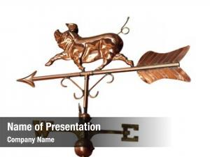 Weather copper pig vane clipping