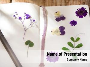 Notebook dry plants
