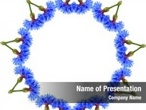 Floral border frame abstract pattern