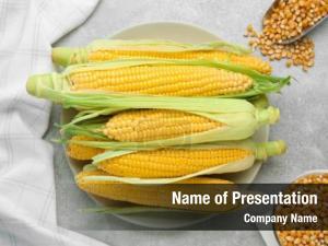 Ear fresh ripe corn, plate