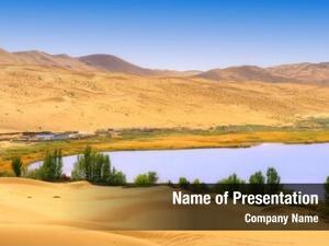 Desert dry plant lake