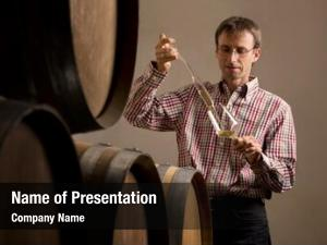 Cellar wine producer taking sample