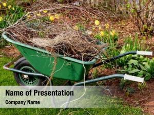 Refuse wheelbarrow full spring garden