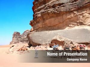 Wadi caravan camels rum desert,