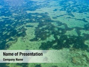 Water crystal clear ishigaki island