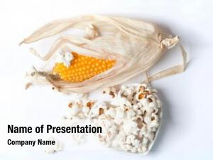 Pop corn cob corn white