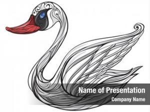 White illustration swan