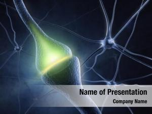 Neural synapse human system