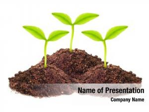 Soil Powerpoint Templates Templates For Powerpoint Soil Powerpoint Backgrounds