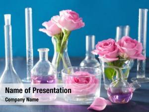 Set alchemy aromatherapy rose flowers