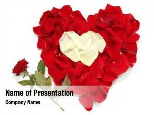 Red beautiful heart white rose