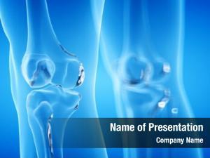 Skeletal rendered human, knee