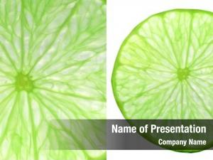 Lime slice green collage (citrus
