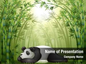 Sleeping illustration panda between bamboo