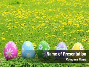 Outside easter eggs grass field
