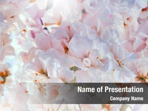 Pink flower soft bouquet