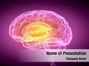 Brain science human purple