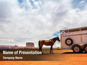 Trailer horse near