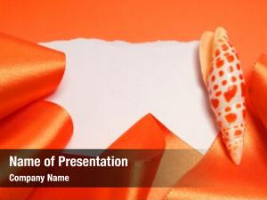 Ribbon seashell orange