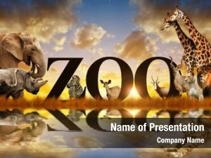 African word zoo animals