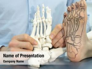 Foot presentation human drawing bones