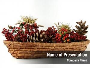 Flowerpot dry plants