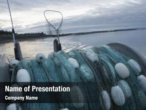Net commercial fishing back fishing