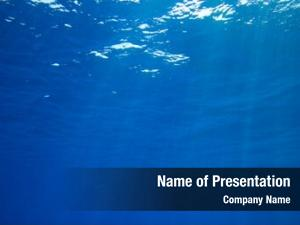 Tranquil underwater powerpoint template