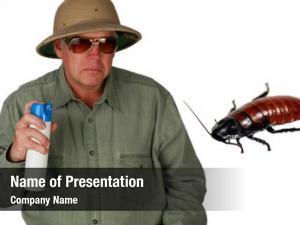 Helmet man pith sprays bug