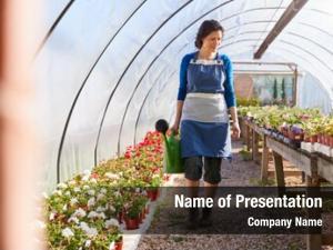 Working mature woman garden center