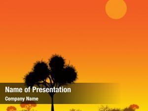Sunset, savanna landscape design