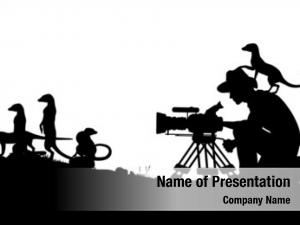 Cameraman illustrated silhouettes filming meerkats
