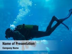 Scuba diver diving set sea