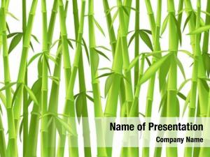 Bamboo design chinese trees,