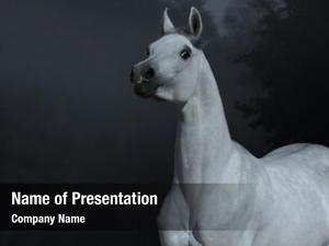 Arabian graceful statuary stallion twilight