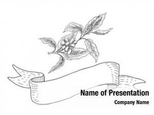 Branch coffee plant ribbon