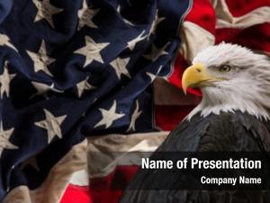 America united states patriotic symbols
