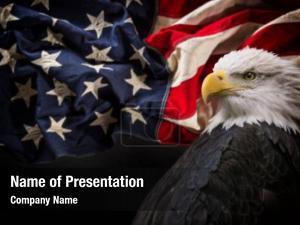 America united states patriotic
