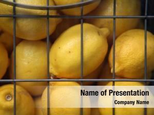 Wire lemons sale cage