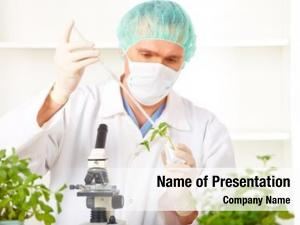 Gmo researcher holding plant