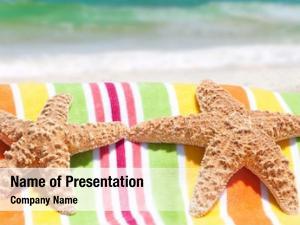 Seashore starfish lounging