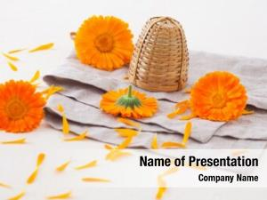 Marigold herbal tea flowers table