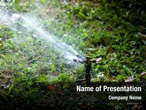 Sprinkler lawn water spraying water