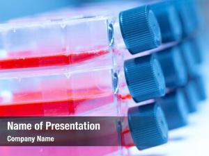 Microbiological culture flasks laboratory