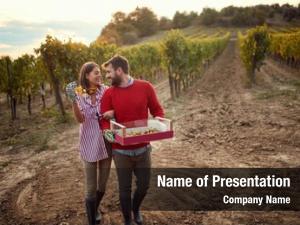 Harvesting smiling couple grapes vineyard