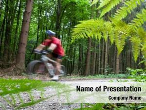 Forest mountain biking biker forest