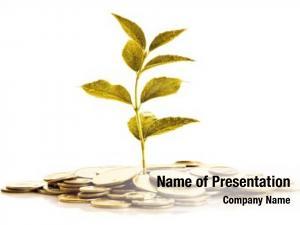 Grow golden plant golden coins