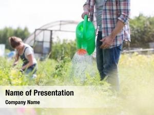 Plants farmer watering farm using