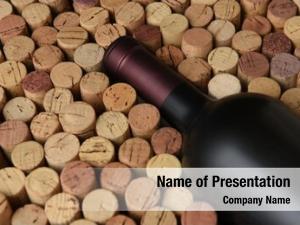 Bottle red wine still life: