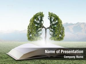 Knowledge concept education tree growing